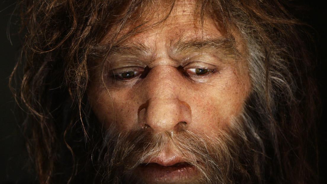 Revelan la variedad de alimentos que consumían los neandertales