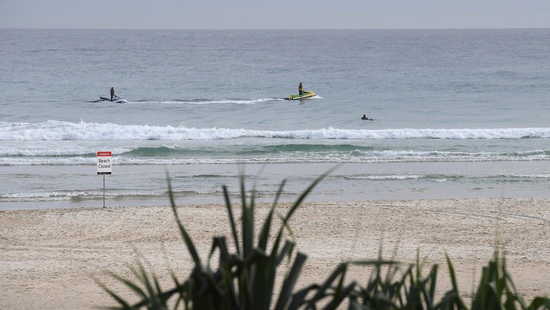 VIDEO: Momento en que un tiburón blanco mata a un surfista en una playa australiana protegida con redes