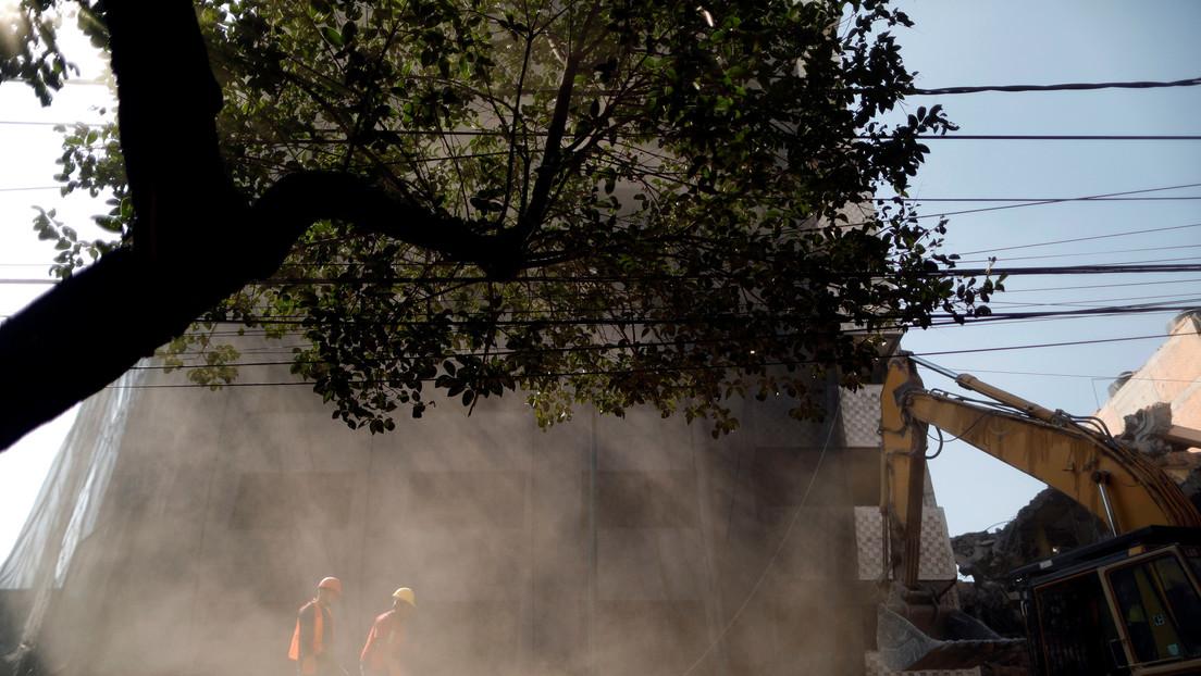 """VIDEO: Una argentina llama """"india horrible"""" a una mexicana en su país por la poda de un árbol"""