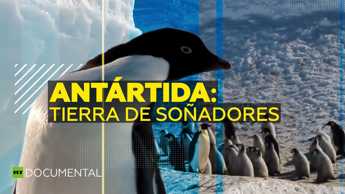 Antártida: tierra de soñadores