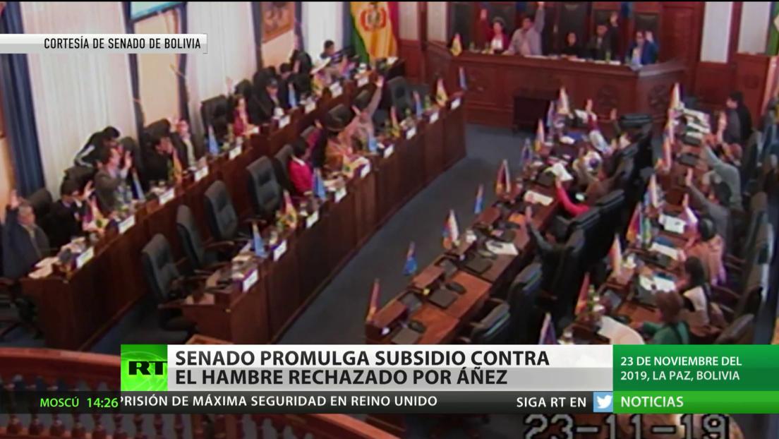 Bolivia: El Senado promulga un subsidio contra el hambre pese a las objeciones de Áñez