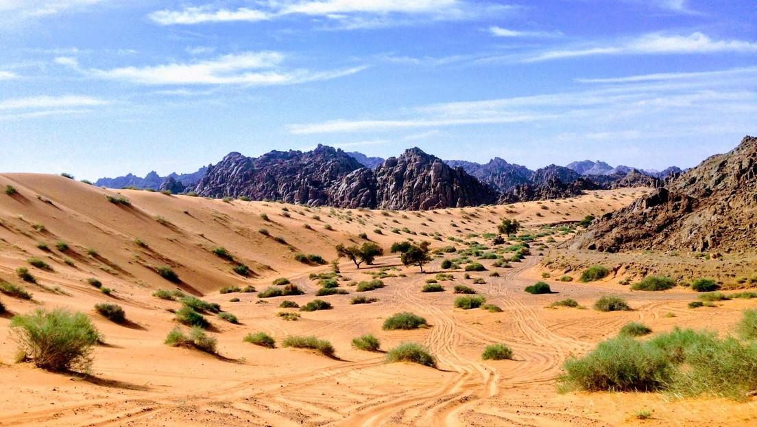 ¿Cómo llegaron los humanos a Eurasia? Huellas de hace 120.000 años halladas en Arabia Saudita dan una pista