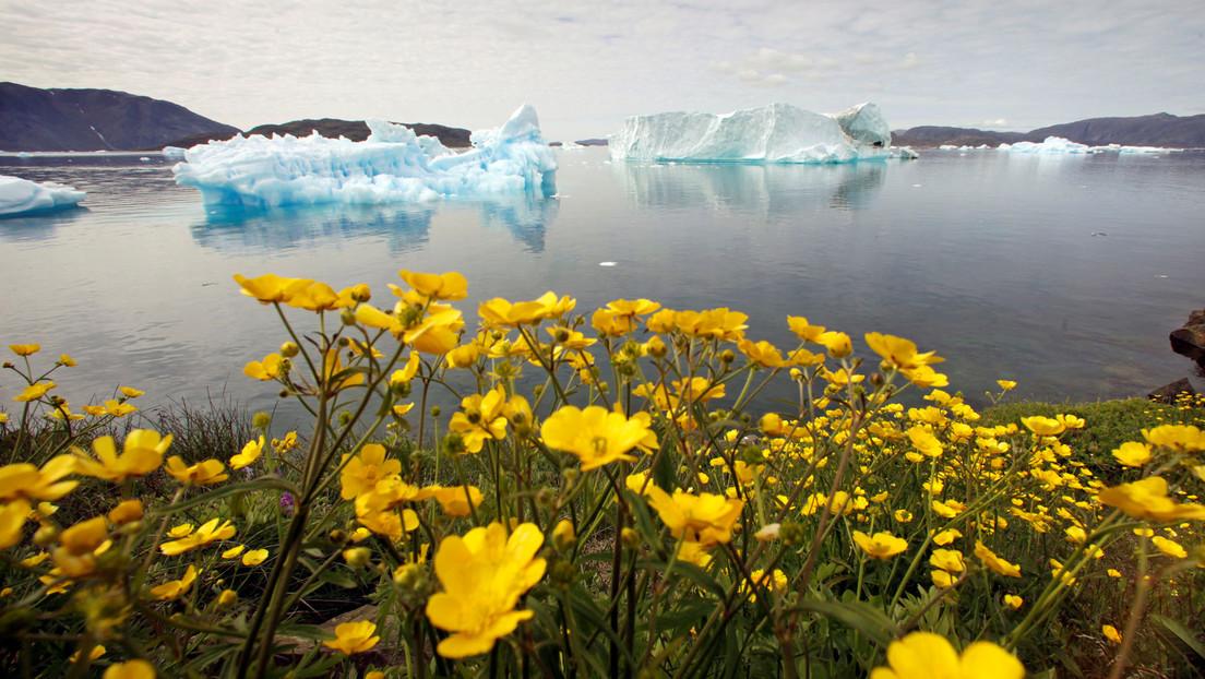 Otorgan a Groenlandia el récord de temperatura más baja en el hemisferio norte, cercano a los -70 °C