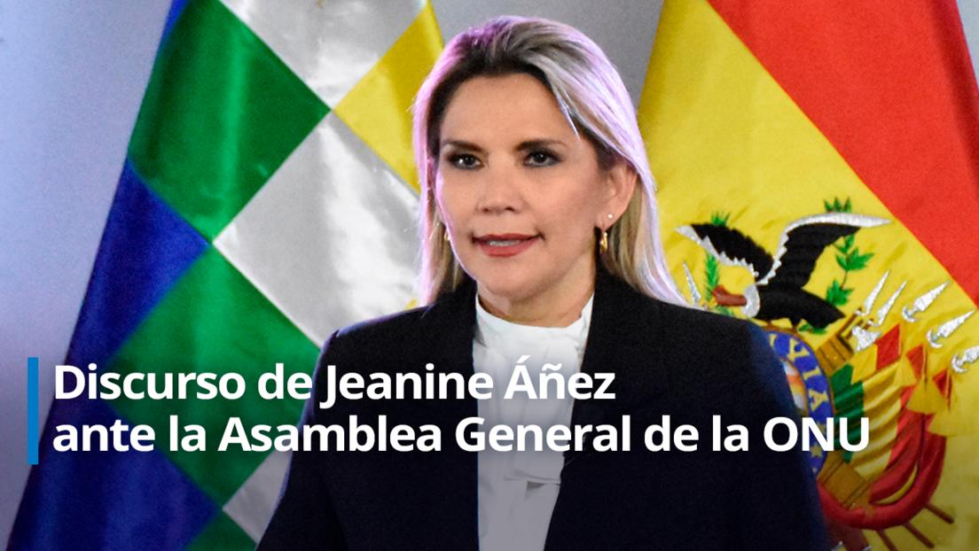 """Áñez denuncia ante la ONU """"el acoso sistemático y abusivo que ejerce el gobierno kirchnerista"""" de Argentina contra Bolivia"""