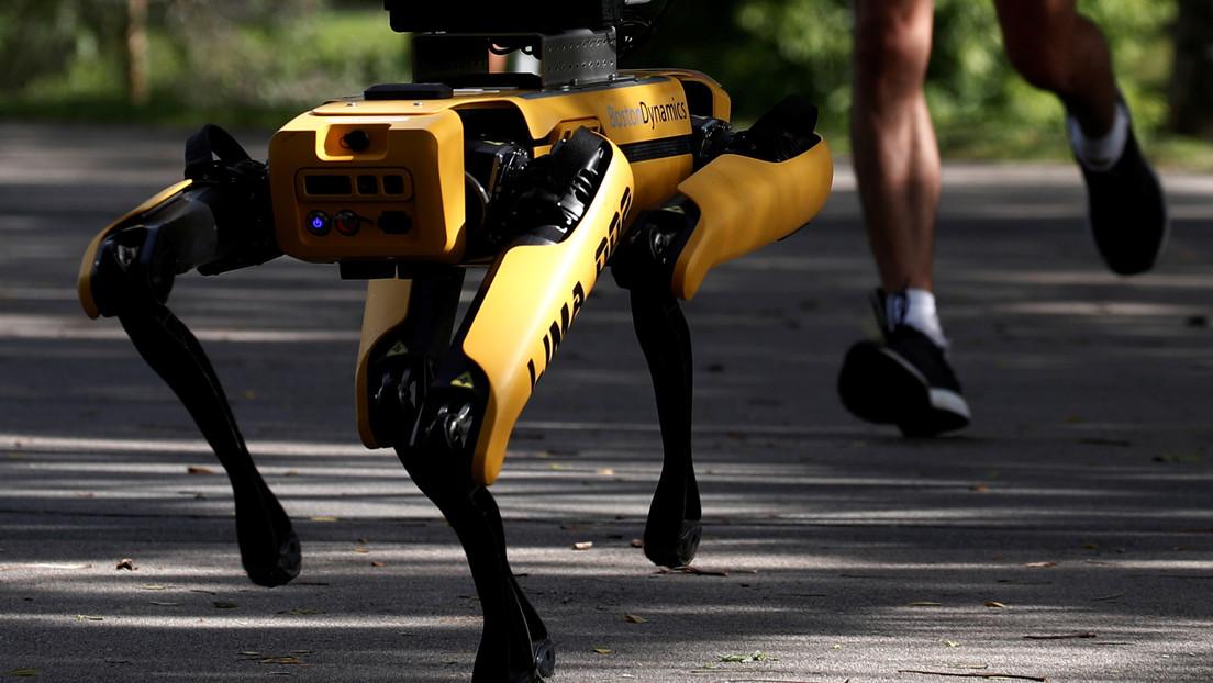VIDEO: Imágenes de un perro robot patrullando las calles causan revuelo en las redes sociales