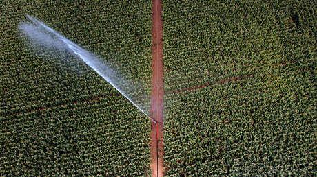 Estudio afirma que cada año se roba hasta la mitad del suministro mundial de agua