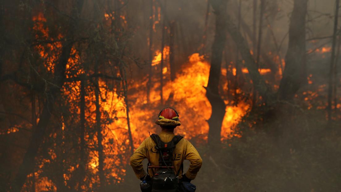 Más de 8.000 incendios han arrasado este año 1,6 millones de hectáreas en California