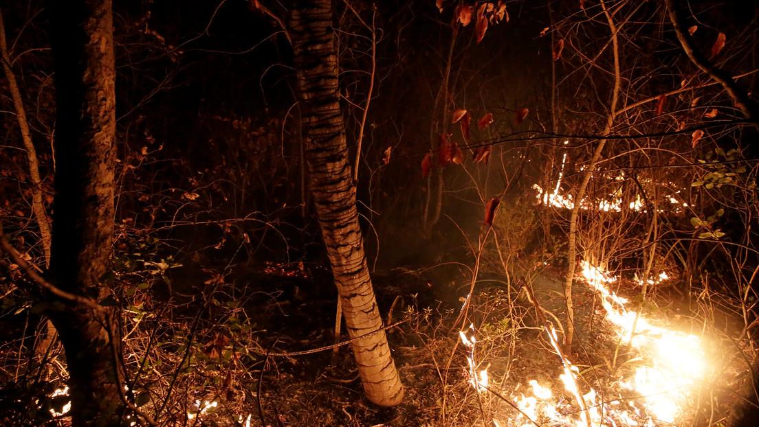El Gobierno de facto de Bolivia declara el desastre nacional por los incendios forestales