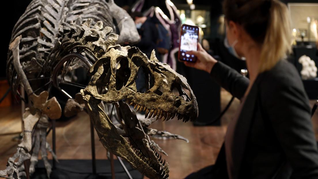 """Un """"abuelo"""" del T-Rex recaba más de 3 millones de dólares en subasta de huesos"""