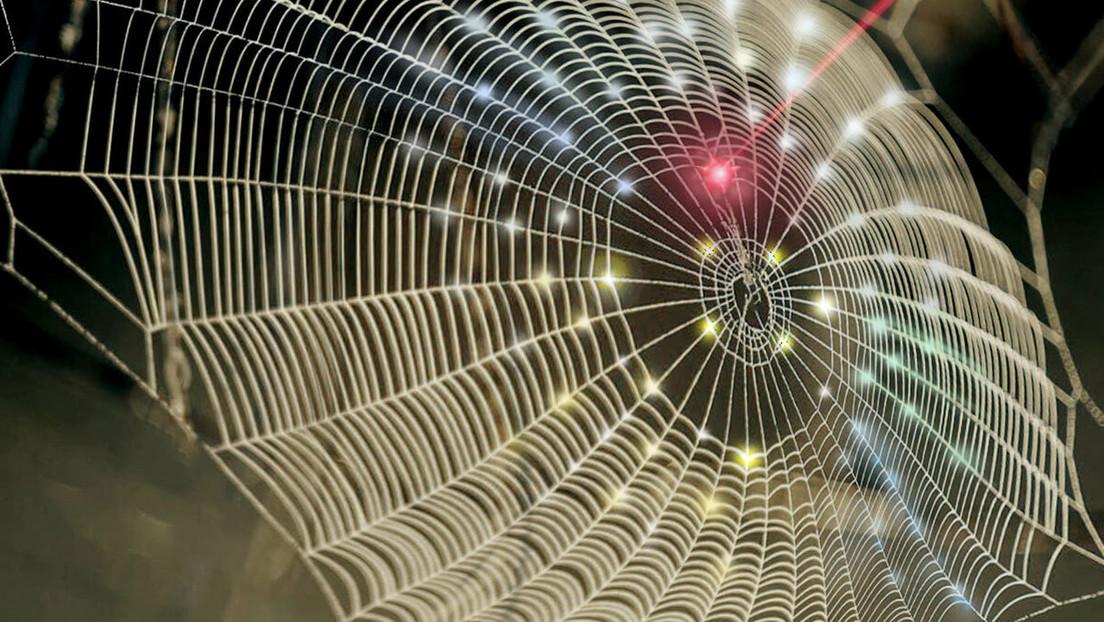 Diseñan fotodetectores 3D inspirados en las telarañas y los ojos de los insectos