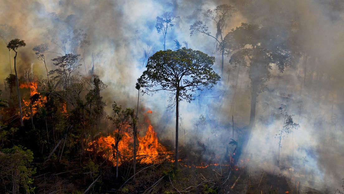 """Bolsonaro asegura que no hay """"nada ardiendo"""" y """"ni siquiera una hectárea de selva devastada"""" en la Amazonía"""