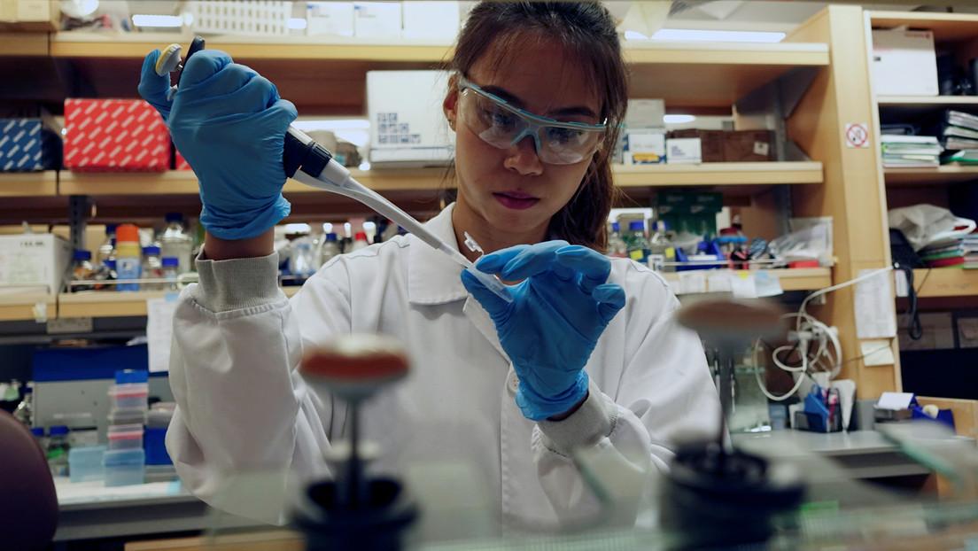 Singapur suspende la aplicación de vacunas contra la gripe tras la muerte de 48 personas en Corea del Sur
