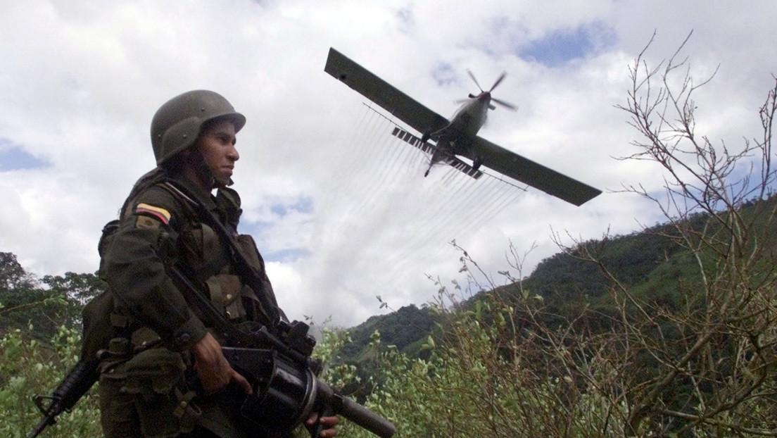 Revés para los campesinos de Colombia: Un juez falla a favor de un proceso que permitirá el regreso de la aspersión con glifosato