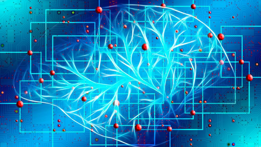 Estudio sugiere que la conciencia humana no se encuentra en el cerebro