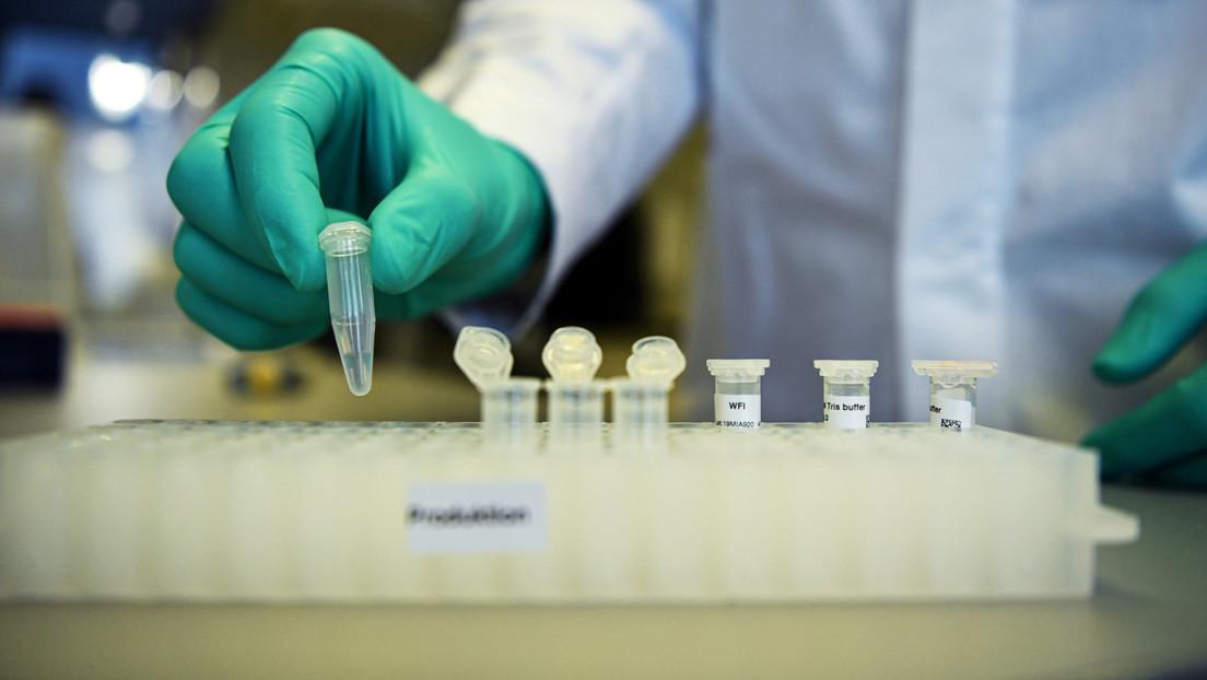 Luz verde para el primer ensayo internacional de una vacuna española contra el covid-19: se probará en Argentina