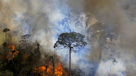 Brasil despliega a la Fuerza Nacional para combatir los incendios en el mayor humedal del mundo
