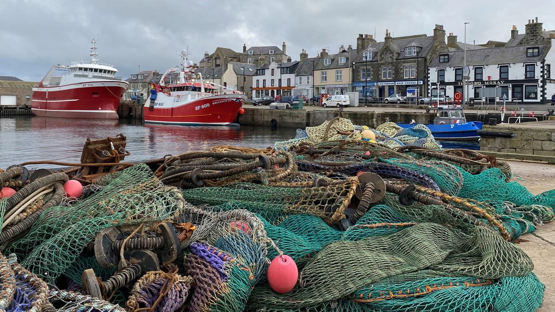 Científicos advierten que los peces capturados por las pesquerías contribuyen al aumento de las emisiones de CO2 a la atmósfera