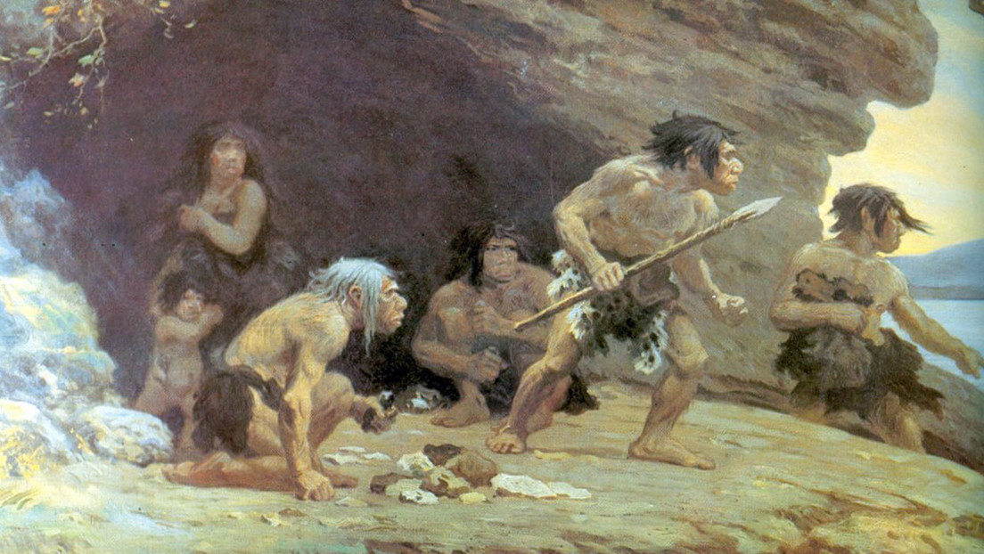 Los Homo sapiens tardamos 100.000 años en desplazar a los neandertales