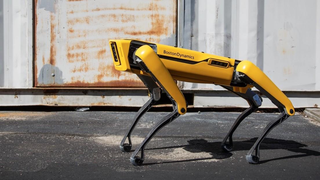VIDEO: El perro robot de Boston Dynamics ahora sirve cervezas en Sevilla
