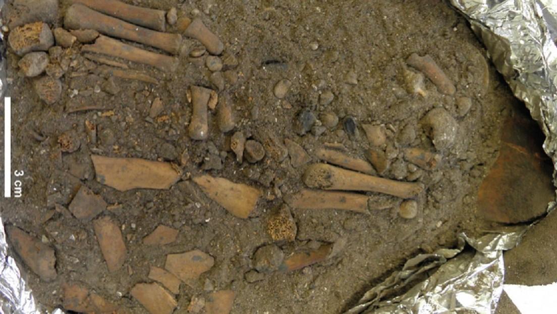 Descubren un inusual entierro infantil de 8.000 años en Indonesia