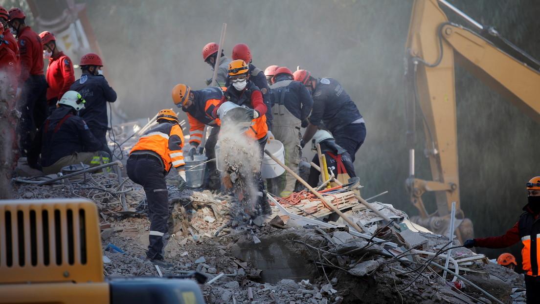 VIDEO: Un perro rescatista salva a un gato de los escombros de un edificio derrumbado por el terremoto en Turquía