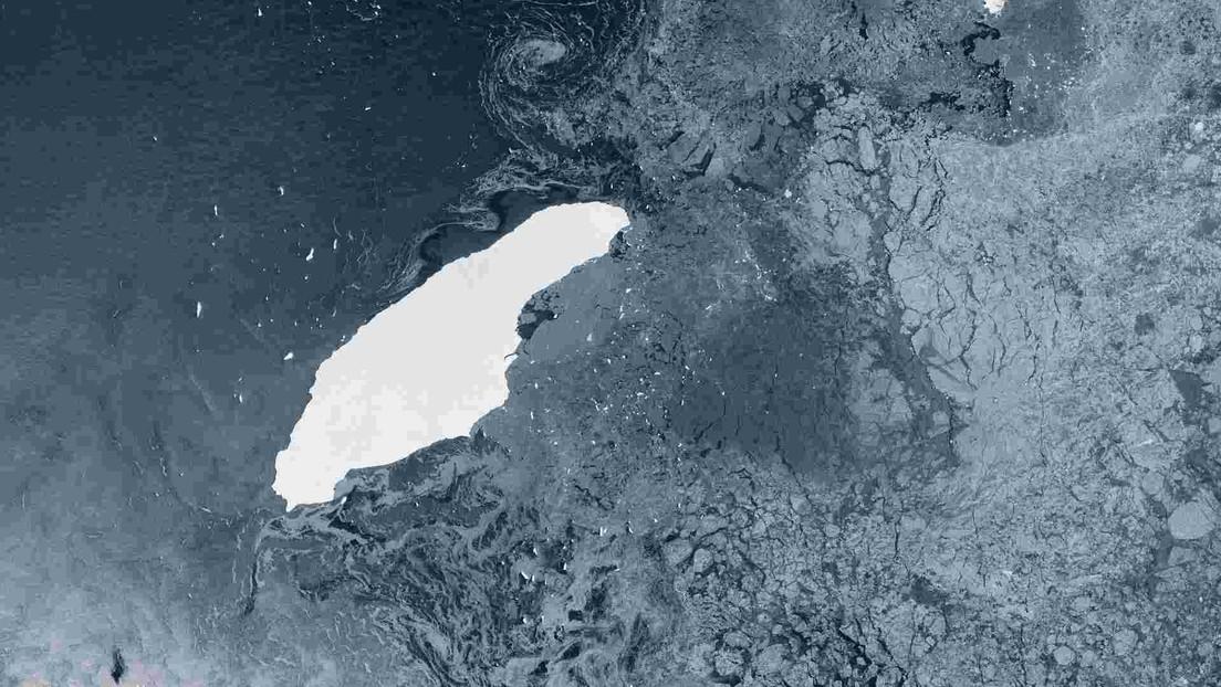 El iceberg más grande del mundo podría colisionar con el santuario de miles de pingüinos y focas en la Antártida