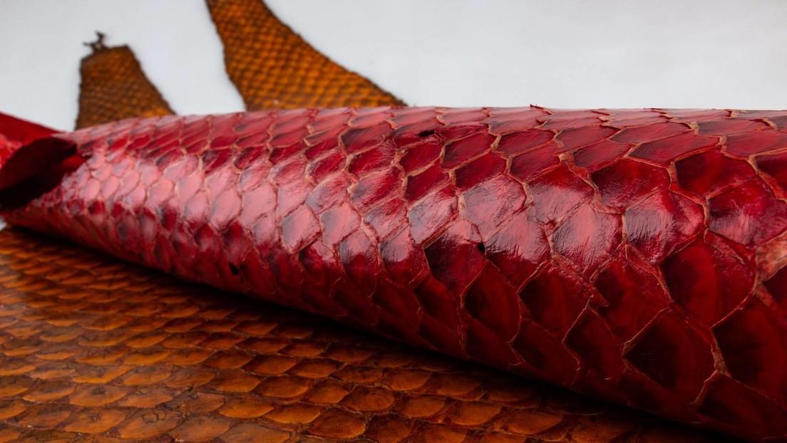 Desde billeteras hasta mascarillas: los productos que fabrica una familia peruana con un inusual material de desechos de la pesca