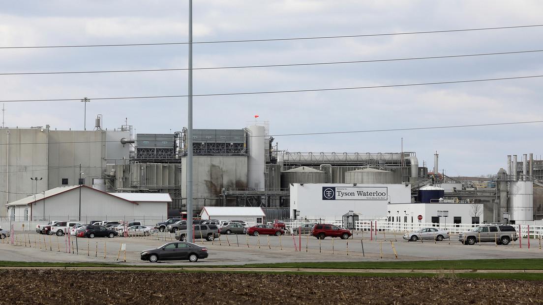Acusan a los gerentes de una planta de carne de apostar dinero sobre cuántos trabajadores enfermarían de covid-19