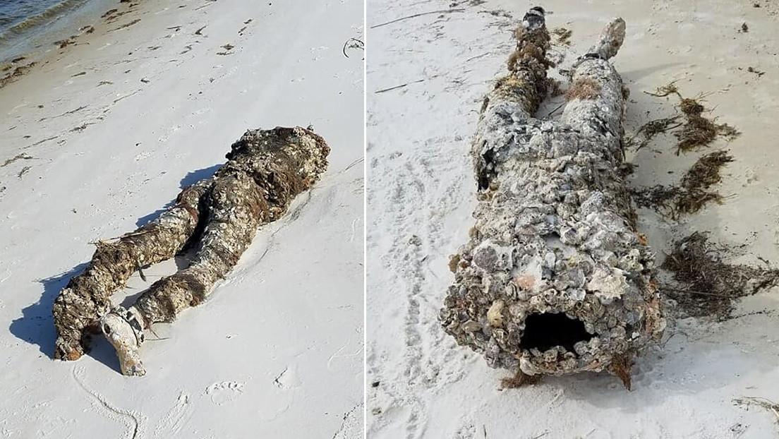¿Cadáver o maniquí?: realizan un siniestro hallazgo en una playa de Florida (FOTO)