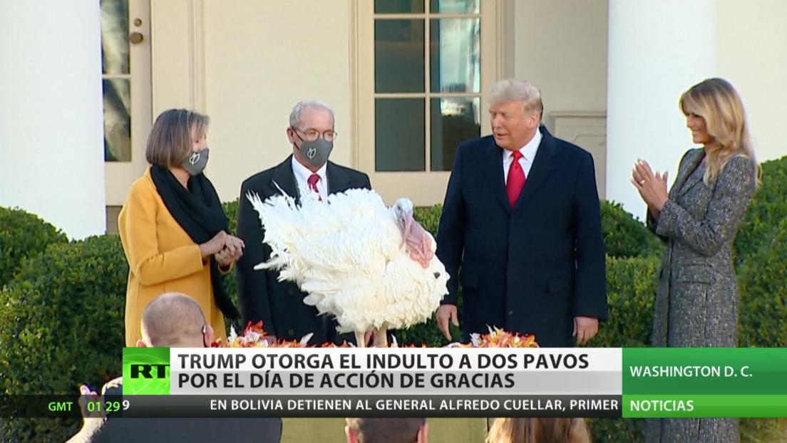 Trump da su último indulto a pavos por el Día de Acción de Gracias