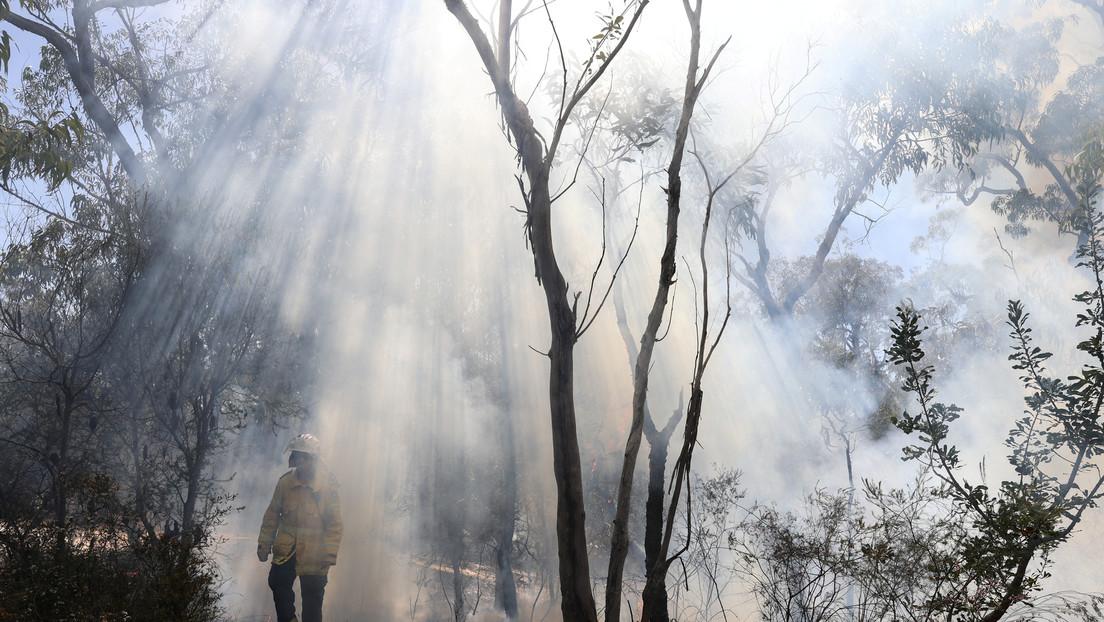 Advierten de un nuevo peligro de incendios en Australia con temperaturas que rozan los 45 grados