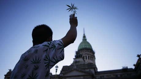 Cambios de paradigma: Argentina legaliza por decreto el autocultivo de marihuana con fines medicinales