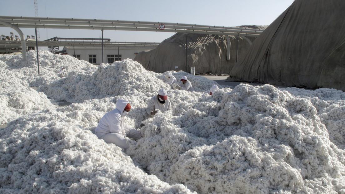 EE.UU. prohíbe la importación del algodón de una empresa china