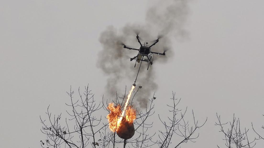 Un dron lanzallamas incinera nidos de avispas en China (VIDEO)