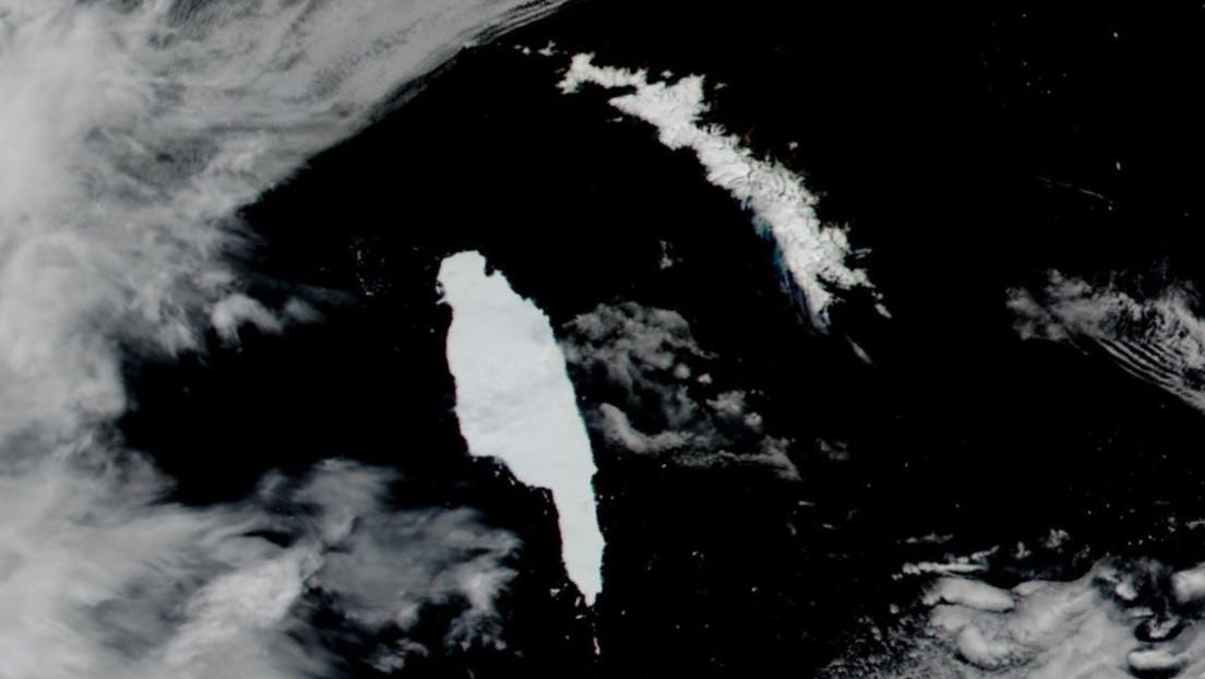 El iceberg más grande del mundo estaría a punto de chocar contra un santuario de pingüinos y focas