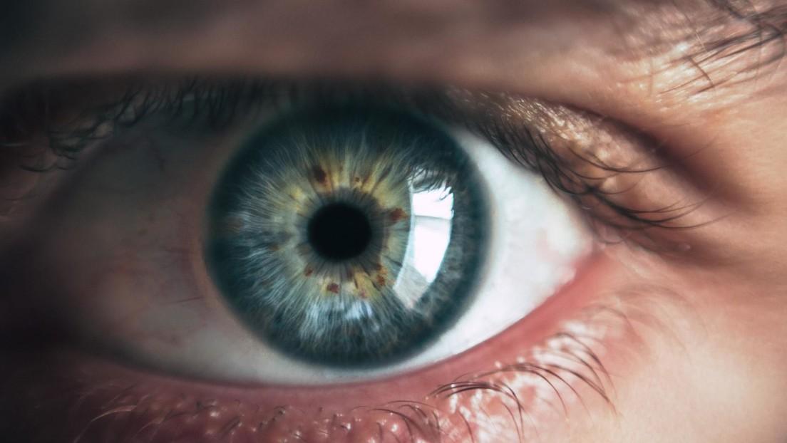 Descubren que la terapia génica de un ojo mejora inesperadamente el funcionamiento del otro