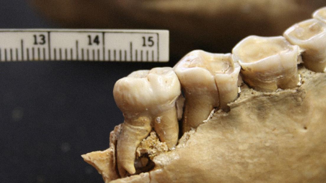 El análisis de los dientes de dos comunidades precerámicas del norte de Perú dan pistas de cómo se formaron sus sistemas sociopolíticos