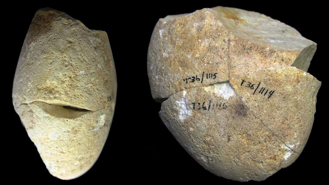 """Identifican en Israel la herramienta de piedra más antigua usada para """"raspar con delicadeza"""" hace unos 350.000 años"""