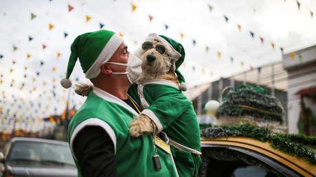 Un taxista y su copiloto canino recorren Bogotá disfrazados de Papá Noel -  RT