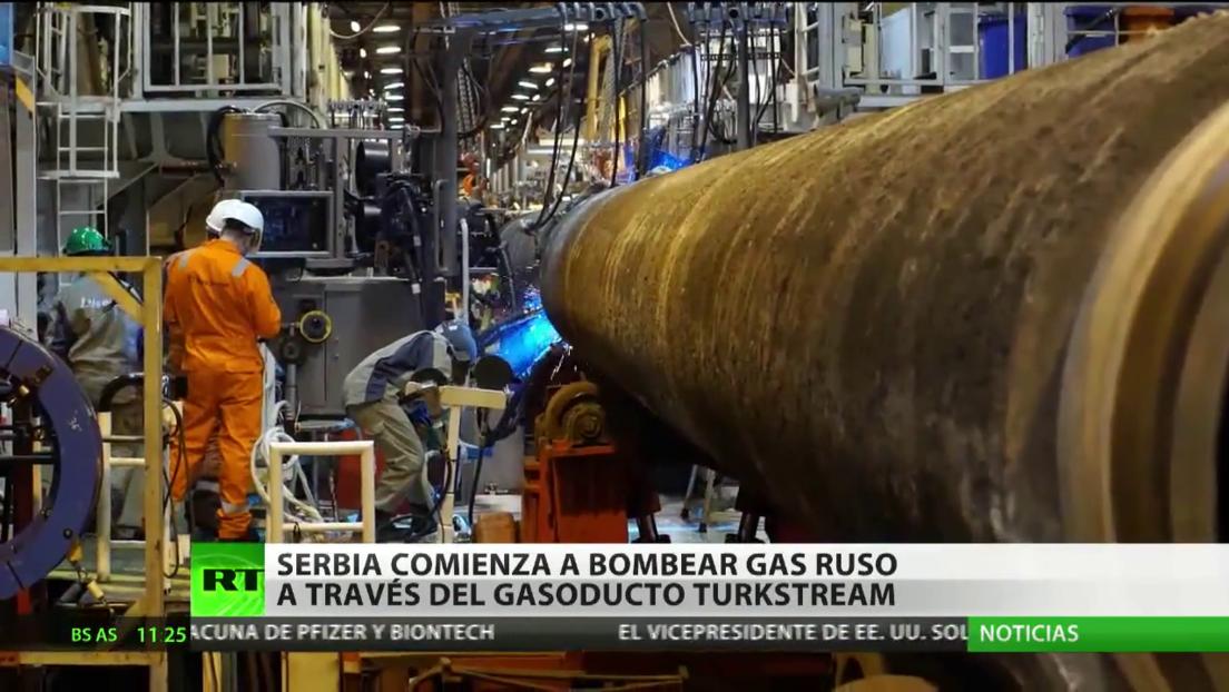 Serbia inicia oficialmente el suministro de gas procedente de Rusia a través del gasoducto TurkStream