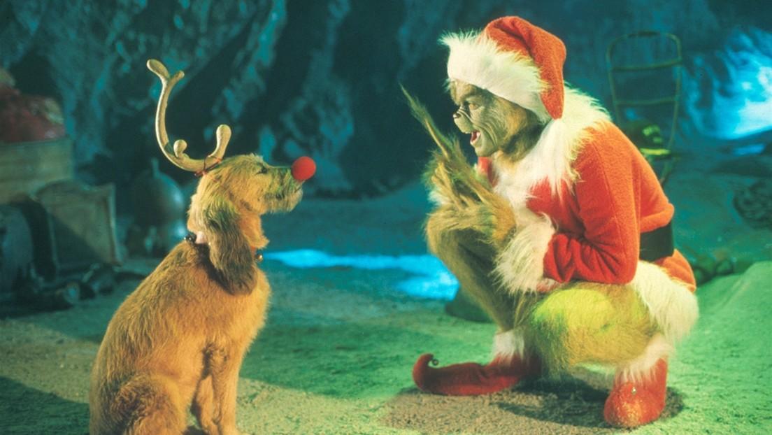 VIDEO: Grinch, el cachorro verde que nació la víspera de Año Nuevo en Georgia