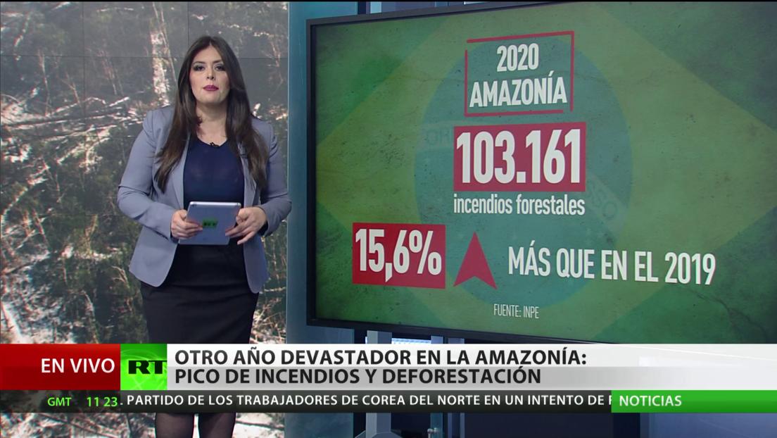 Otro año devastador para la Amazonía, con picos de incendios y deforestación