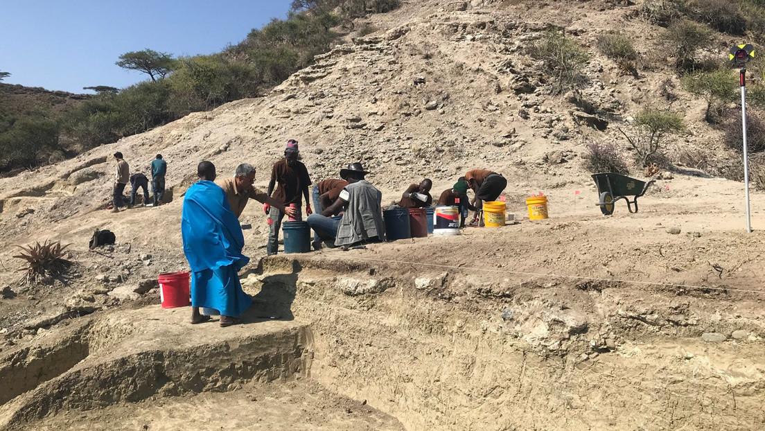 Descubren el más antiguo asentamiento hallado en la Cuna de la Humanidad, con cerca de dos millones de años de antigüedad