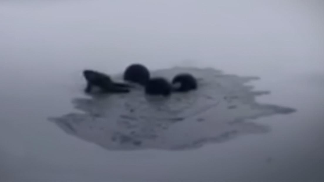 VIDEO: Un bloguero y su todoterreno se hunden bajo el hielo en un lago en el norte de Rusia