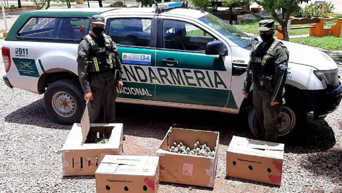 Gendarmes paran un auto por el alto volumen de la música y encuentran 216 loros habladores transportados de contrabando en el maletero