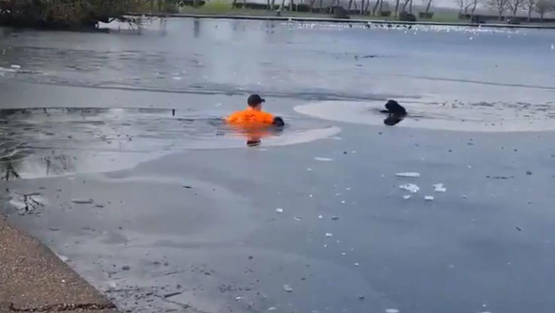 VIDEO: Un hombre salta a las aguas de un lago congelado para salvar a un perro