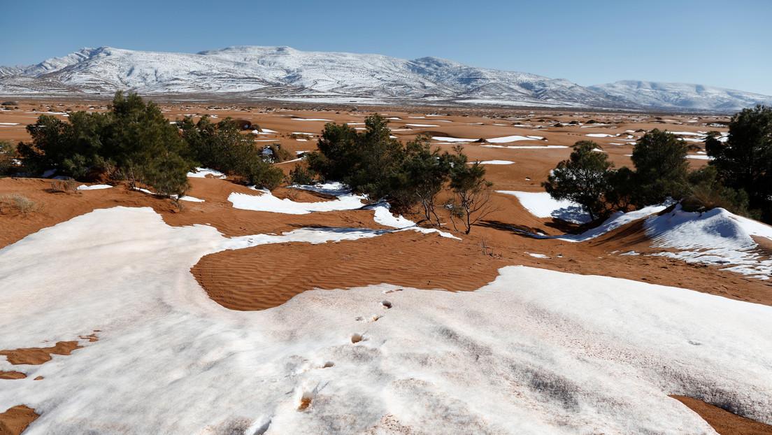 VIDEOS: Nieve tiñe de blanco una parte del desierto del Sahara y varias regiones de Arabia Saudita