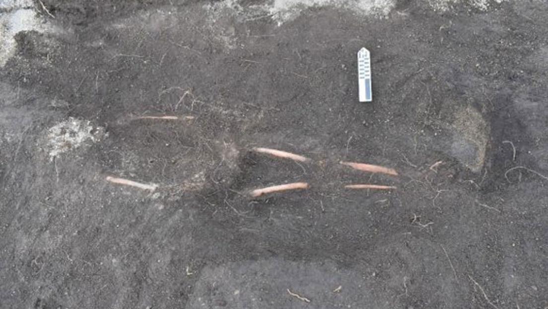 """Encuentran esqueletos humanos y vasijas del periodo intercolonial con un extraño símbolo en una """"cancha"""" inca en Ecuador (FOTOS)"""