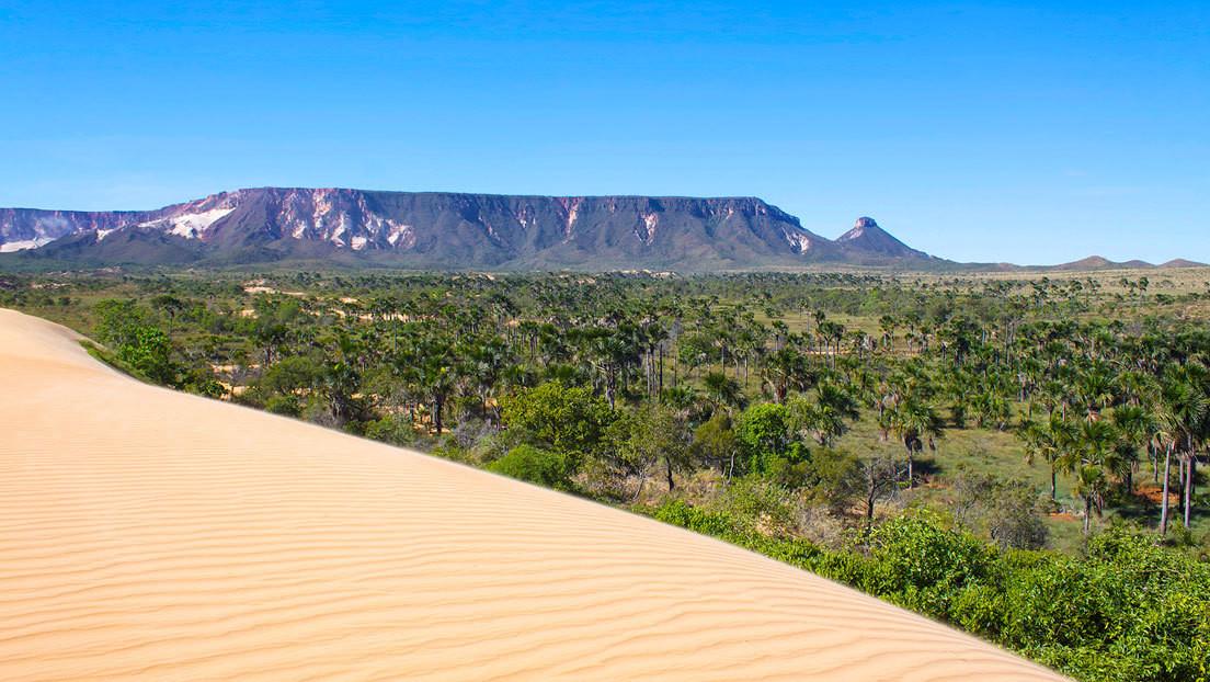 El Gobierno de Brasil avanza en la privatización de otros 26 parques naturales