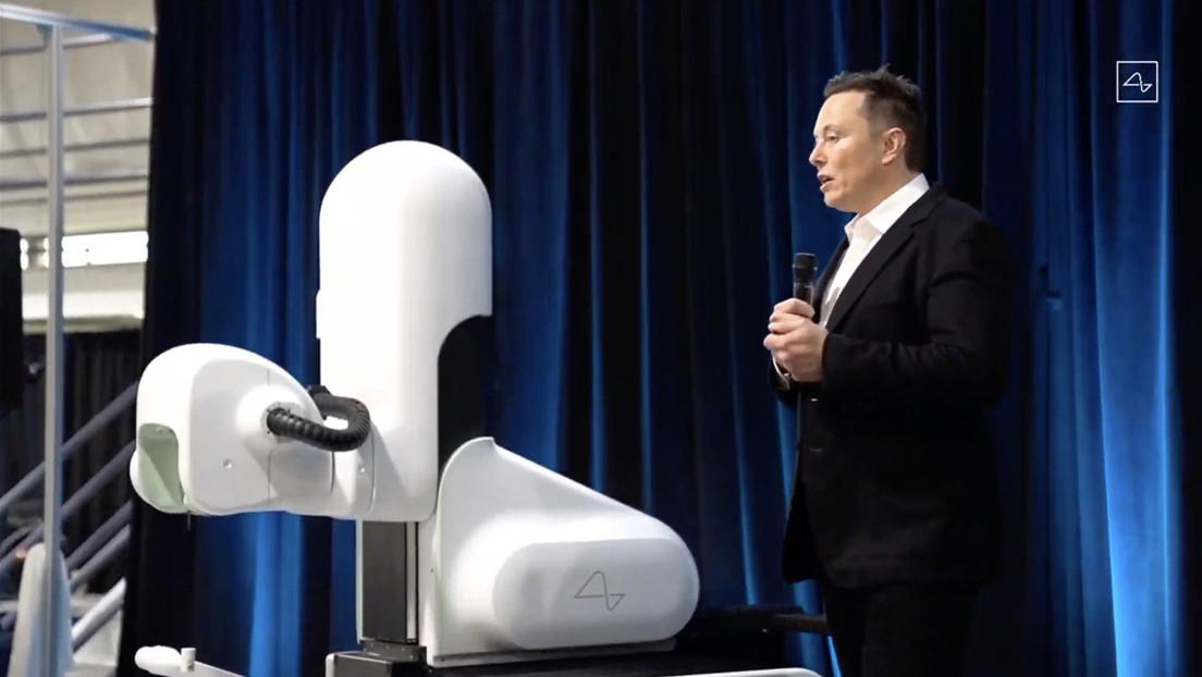 Musk afirma que su 'startup' Neuralink tiene un mono con un chip cerebral que le permite jugar a videojuegos con su mente